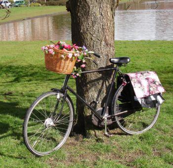 bike_shopping
