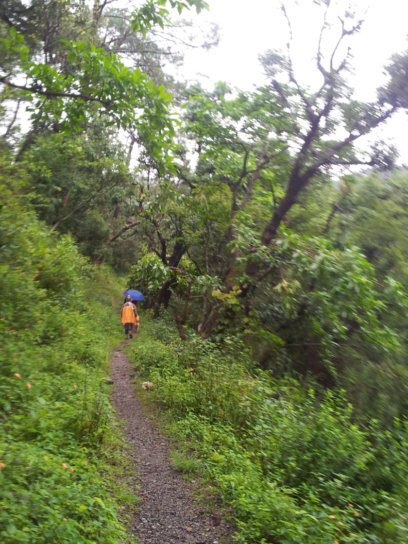 Hiking across a trail in Bhimtal